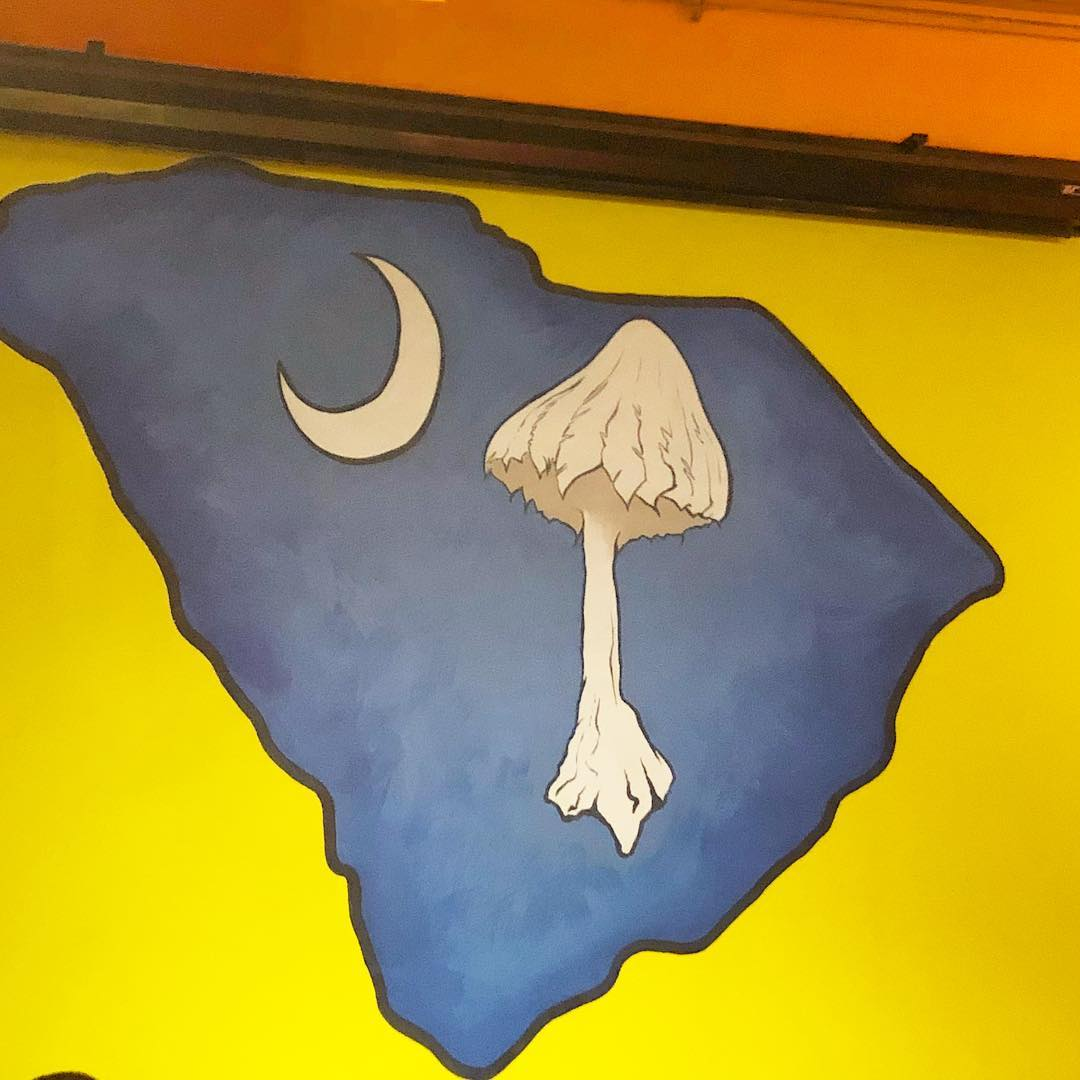 Since SC no longer has an official flag design, this Mellow Mushroom design might be a contender. 🙂 https://www.scetv.org/stories/palmetto-scene/2018/south-carolina-flag-not-official