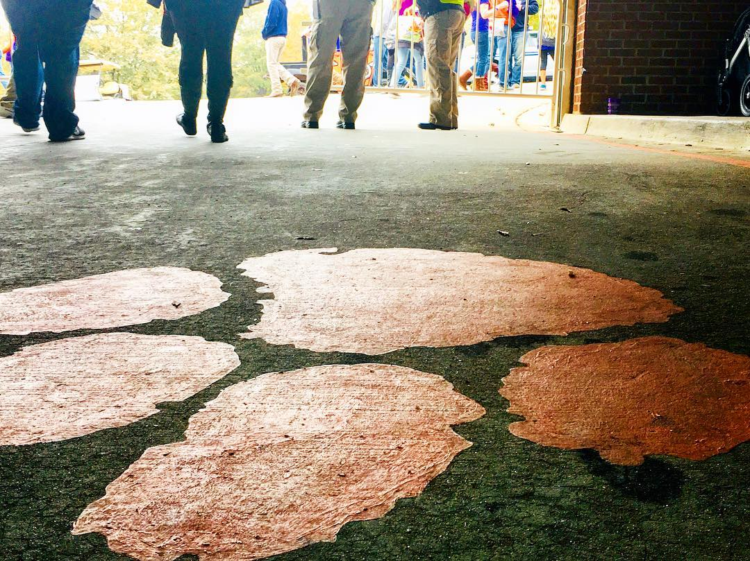 This paw print 🐾 leads you directly into the field at Death Valley