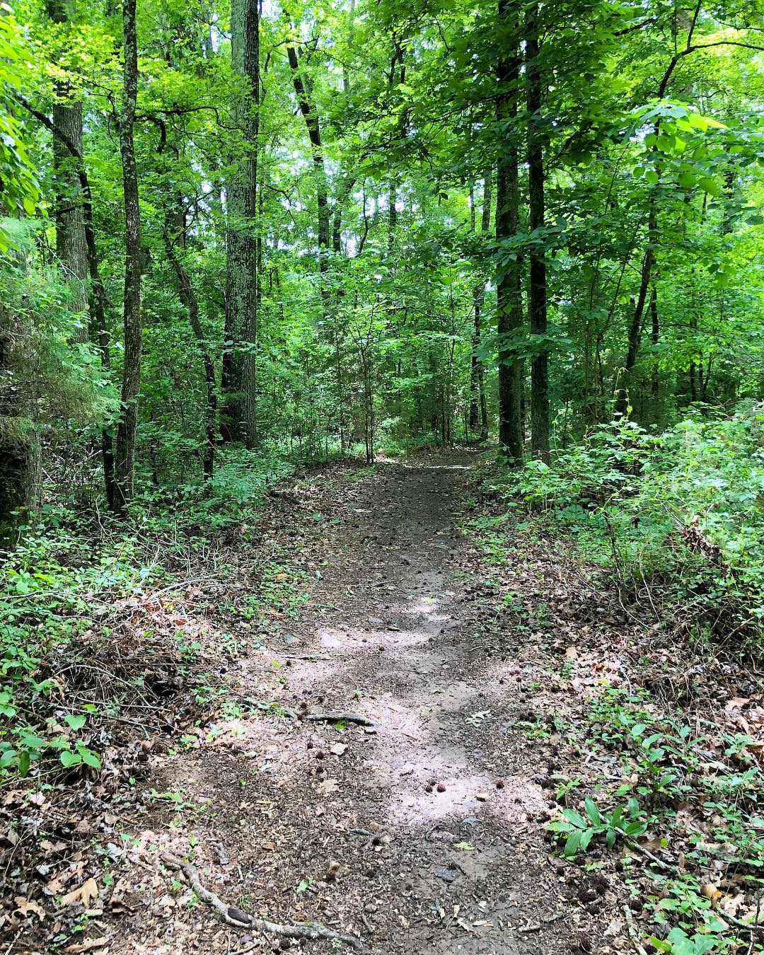 While a wildlife management area, Draper features trails through wooded and open fields for exploring