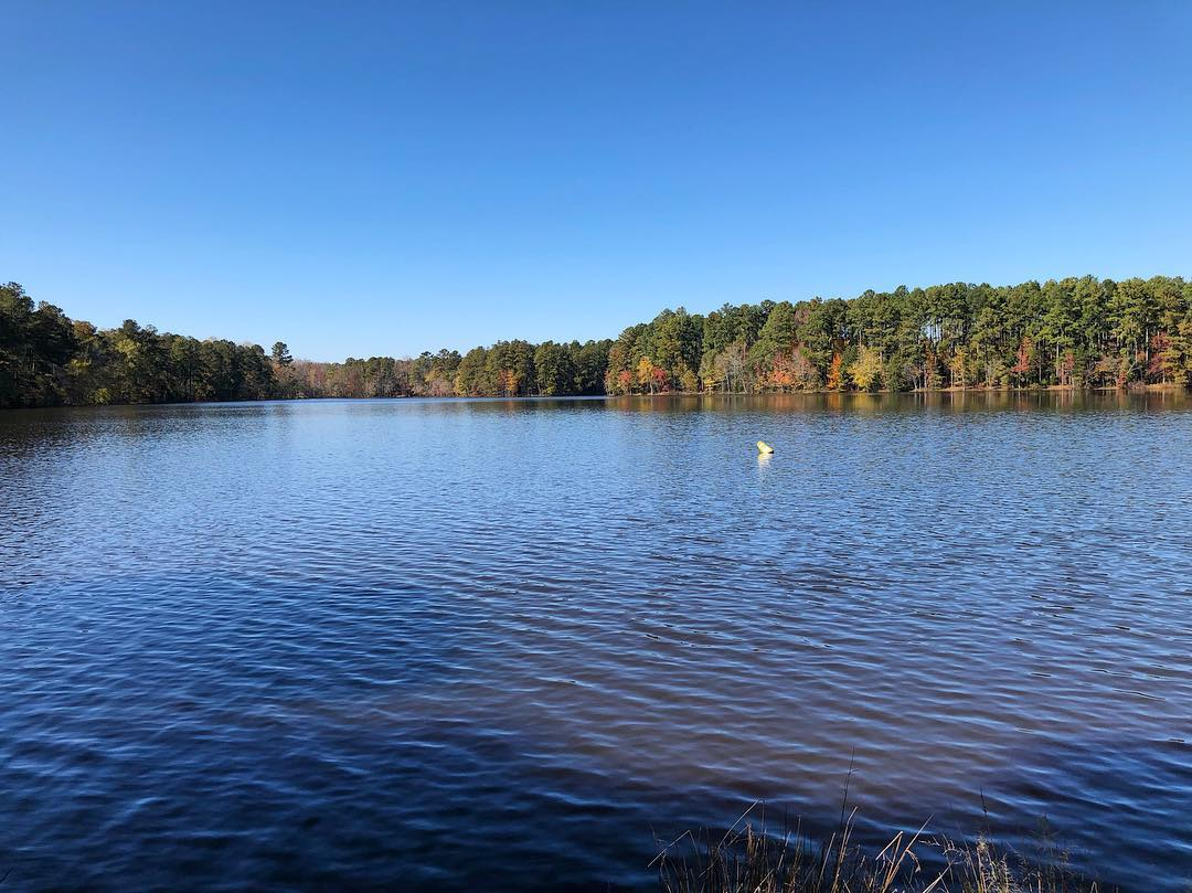 Lake Oliphant is 40-acres lake that provides fishing opportunities for largemouth bass, bluegill, shell-cracker and catfish